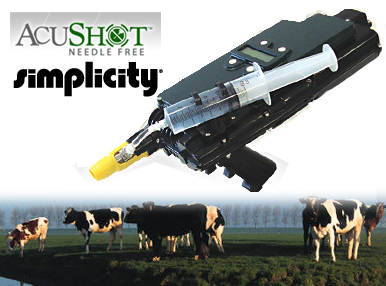 Accushot and cows
